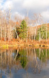 Tree reflections on pond and Fall color Stock Photo