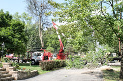 Tree Removal truck landscaping Royalty Free Stock Images