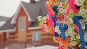 Tree with ribbons on holiday stock video footage