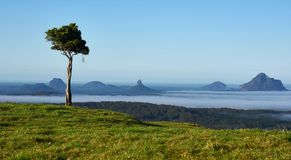 Glass House Mountain surrounded by mist Royalty Free Stock Photo