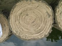 Tree Ring. All that shows with the rings.Circle like life Royalty Free Stock Photos