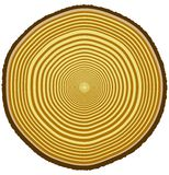 Tree rings stock illustration