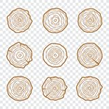 Tree rings icons vector illustration. Abstract age annual. Circl. E tree background Royalty Free Illustration