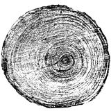 Tree rings saw cut tree trunk background. Vector Royalty Free Stock Images