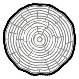 Tree Rings Saw cut tree trunk background. Vector Illustration. royalty free illustration