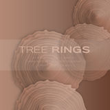 Tree rings with saw cut tree trunk Royalty Free Stock Image