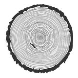 Tree rings and saw cut tree trunk. Vector illustration. Vector tree rings background and saw cut tree trunk isolated on white Royalty Free Stock Image