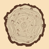Tree rings  and saw cut tree trunk. Royalty Free Stock Photo