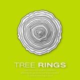Tree rings Stock Image