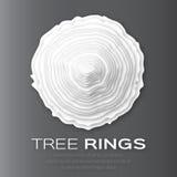Tree rings Royalty Free Stock Image