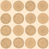 Design Zentangle. Line art. Tree rings. Seamless pattern. Set of tree rings on isolation background. Conceptual graphics. Line art. Objects for design Royalty Free Stock Photography