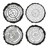 Tree rings. Set of cross section vector illustration