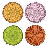 Tree rings. Set of cross section Stock Photography