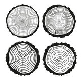 Tree rings. Set of cross section of the tree. Royalty Free Stock Photo