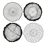 Tree rings. Set of cross section stock illustration