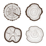 Tree Rings Set Saw Cut Trunk Eco Design Style. Vector Stock Photo