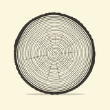 Tree Rings Vector Illustration Stock Photography
