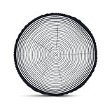 Tree Rings Vector. Isolated on White Background Stock Photos