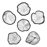 Tree-rings vector set. Wood ring saw cuts with linear tree texture vector illustration