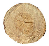 Tree Rings, Wood, log. Wooden texture Stock Image