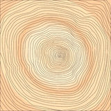 Tree rings. Wooden cut texture - vector illustration, you can easily change the color and size Stock Photography