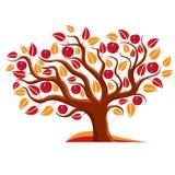 Tree with ripe apples, harvest season theme illustration.  Royalty Free Stock Images