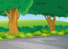 Tree beside road Royalty Free Stock Photo