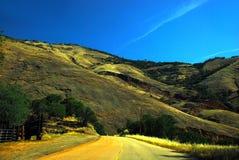 Tree Road Yucca Valley desert California Stock Photo