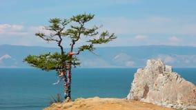Tree. Rock Shamanka, headland Burhan, Olkhon island, Baikal, Siberia, Russia. Tree with ribbons in the wind and rock Shamanka at headland Burhan .Olkhon island stock footage