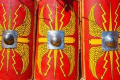 Tree Roman military shields Royalty Free Stock Photo
