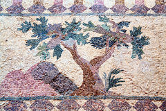 Tree, Roman mosaic, Paphos, Cyprus Royalty Free Stock Photography
