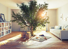 Tree in a room Royalty Free Stock Photos