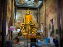 Tree root covering ancient temple : Wat Bang Kung at Amphawa Royalty Free Stock Photo