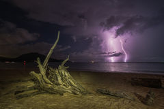 Tree root and lightning in the sea Royalty Free Stock Images