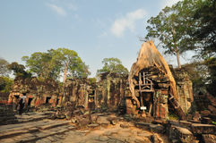 Tree root overgrowing parts of ancient Preah Khan Temple at angk Stock Photo