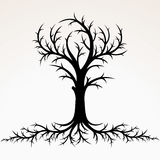 Tree with Root Silhouette. Vector Royalty Free Stock Photos