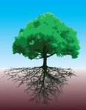 Tree with roots. Vector illustration Royalty Free Stock Image