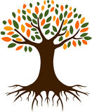 Tree and Roots  Illustration Stock Images