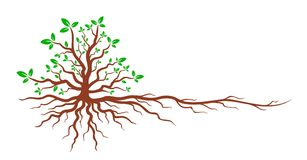 Tree with roots. Logo of the green tree with the root system Stock Photos