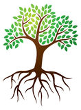 Tree Roots Logo. A tree with leaves and roots logo icon vector illustration