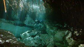 Tree roots and rocks in Yucatan Mexican cenote. Tree roots and rocks in the bush landscape Mexican Sacred Mayan Cenote. Deep underground clean and clear fresh stock footage