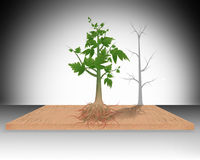 Tree and with roots in soil illustration Royalty Free Stock Image