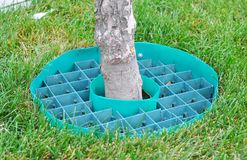 Tree rubber roud for better rain and watering drain tree roots. Tree rubber roud for better watering drain tree roots royalty free stock image