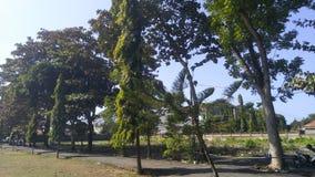 Tree& x27; s brama dla każdy ludzie które przychodzili Zdjęcie Royalty Free