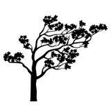 Tree sakura silhouette. Vector illustration. Royalty Free Stock Photography