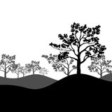 Tree Sakura Silhouette With Landscape. Vector Illustration. Royalty Free Stock Photos