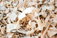 Tree sawdust Royalty Free Stock Images