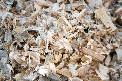 Tree sawdust Stock Photo