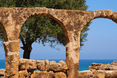 Tree and sea through the arches. A view of the sea and a tree through arches of roman remainings in Tipasa, Algeria Stock Images