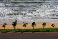 Tree, sea and beach in gulf of Thailand Stock Photos